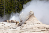 USA, Yellowstone National Park, Castle Geyser Photographic Print by Catharina Lux