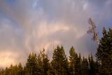 USA, Yellowstone National Park, Cloud Photographic Print by Catharina Lux