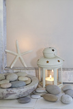 Decoration, White, Window Frames, Lantern, Candle, Bowl, Stones, Starfish Photographic Print by Andrea Haase