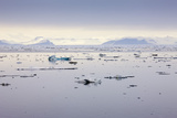 Norway, Spitsbergen, Drift Ice Photographic Print by Frank Lukasseck