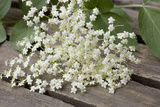 Elder Flowers Photographic Print by Manuela Balck