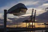Hamburg, Container Terminal, Lantern, Dusk Photographic Print by Catharina Lux