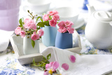 Table Decoration Photographic Print by Brigitte Protzel