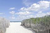 Beach Path, Lummus Park, Miami South Beach, Art Deco District, Florida, Usa Photographic Print by Axel Schmies
