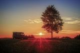 Germany, Bavaria, AllgŠu, Scenery, Cross Country Vehicle, Tree, Sundown Photographic Print by Martin Zurek