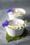 Small White Bowls with Floating Candles and Daisies Photographic Print by Brigitte Protzel