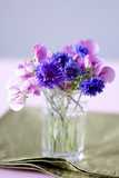 Small Bouquet with Cornflowers and Vetch on Green Silk Photographic Print by Brigitte Protzel