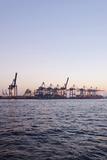 Harbour Cranes, Waltershof, Evening Mood, Harbour, Hanseatic City of Hamburg, Germany Photographic Print by Axel Schmies