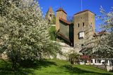 Switzerland, Spring in Fribourg on the Sarine River, Cats Tower and Berne Gate Photographic Print by Uwe Steffens