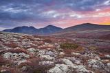 Norway, Rondane National Park, Mountain Landscape, Autumn Photographic Print by Rainer Mirau