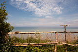 The Baltic Sea, RŸgen, Coast, Fence Photographic Print by Catharina Lux