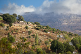 Greece, Crete, Landscape in the Dikti Mountains Photographic Print by Catharina Lux