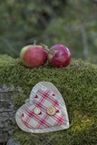 Apples, Two, Heart, Tree Trunk, Moss Photographic Print by Andrea Haase