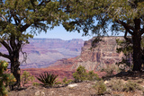 USA, Grand Canyon National Park, South Rim Photographic Print by Catharina Lux