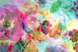 Abstract Dreamy Multicolor Blossoms in Water Photographic Print by Alaya Gadeh