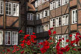 Hamburg, Neanderstrasse, Half-Timbered Houses, Facades, Flowers Photographic Print by Catharina Lux