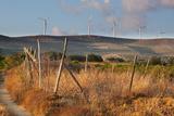Greece, Crete, Chandras Plateau, Wind Turbines, Evening Light Photographic Print by Catharina Lux