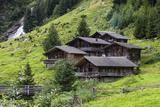 Austria, East Tyrol, Gschild, Farmhouses Photographic Print by Gerhard Wild