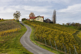 Europe, Austria, Styria, South-Styrian Wine Route, Vineyards, Houses Photographic Print by Gerhard Wild