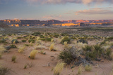Desert Near Wahweap, Glen Canyon National Recreation Area, Utah, Usa Photographic Print by Rainer Mirau