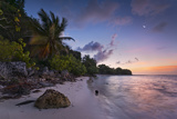 Guadeloupe, France, the Caribbean, Island, Beach, Palms, Sea, Sunrise, Mood, Morning Photographic Print by Stefan Hefele