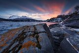 Norway, Nordland, Fjord, the North, Cold, Rocks, Coast, Lichens, Foreground, Moss Photographic Print by Stefan Hefele