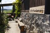 Austria, Lower Austria, Perchtoldsdorf (Village), Heuriger (Tavern), Self-Service Restaurant Photographic Print by Gerhard Wild