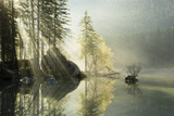 Lake Hintersee, Lake, Water, Reflexion, Rays of Light, Tree, Autumn, Fog, Atmosphere Photographic Print by Stefan Hefele