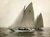 155448 Alera and Fiji Photographic Print by Edwin Levick