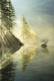 Hintersee, Lake, Water, Reflection, Light, Rays, Tree, Autumn, Fog, Mood Photographic Print by Stefan Hefele