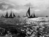 Skipjacks on the Chesapeake Bay Near Sharps Island Photographic Print by A. Aubrey Bodine