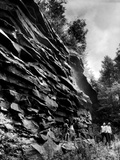 Swallow Falls, Garett County Photographic Print by A. Aubrey Bodine