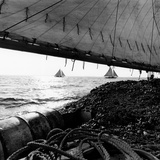 Oyster Dredging in the Chesapeake Bay Photographic Print by A. Aubrey Bodine