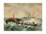 Peche De La Baleine Giclee Print by Edouard Travies