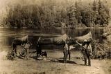 Nepigon (Nipigon), Ottawa, Algonkin and Ojibway Canoes Photographic Print by Edwin Tappan Adney