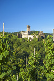 Metternich Castle About Vineyards, Beilstein, Moselle River, Rhineland-Palatinate, Germany Photographic Print by Chris Seba