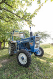 Brensbach, Hessen, Germany, Ford 2600, 34 Hp Photographic Print by Bernd Wittelsbach