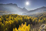 Sorapiss, Larches, Sun, Cortina D'Ampezzo, Veneto, the Dolomites, Italy Photographic Print by Rainer Mirau