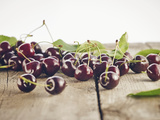 Cherry, Wood, Board, Brown, Red, Nature, Harvest, Fruit Photographic Print by Axel Killian