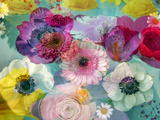 Coloured Blossoms in Blue Water Photographic Print by Alaya Gadeh