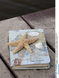 Still Life with Travel Diary, Wooden Jetty, Seashell, Starfish Photographic Print by Andrea Haase