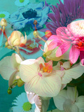 Photomontage of Flowers in Water Photographic Print by Alaya Gadeh
