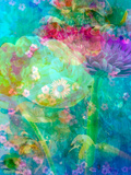 Floral Montage, Multicolored Photographic Print by Alaya Gadeh