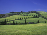 Italy, Tuscany, Siena, Chianciano Terme, Landscape at La Foce Photographic Print by Udo Siebig