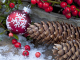 Christmas Decoration, Still Life Photographic Print by Andrea Haase