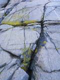 Norway, Telemark, the North Sea, Skagerak, Portšr, Lichen-Covered Rocks Photographic Print by Andreas Keil