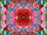 A Mandala from Flower Photographs Stampa fotografica di Alaya Gadeh
