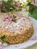 Apple Pie with Cracknel and Blossoms Papier Photo par Manuela Balck