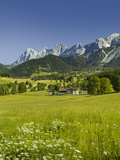 Ramsau, Dachstein, Summer Meadow, Styria, Austria Papier Photo par Rainer Mirau