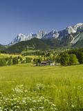 Ramsau, Dachstein, Summer Meadow, Styria, Austria Reprodukcja zdjęcia autor Rainer Mirau